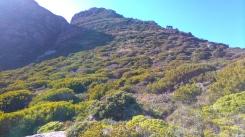 Duiker Ridge